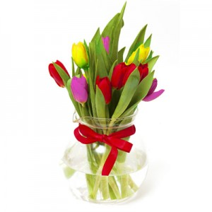 9 Colorful Tulips