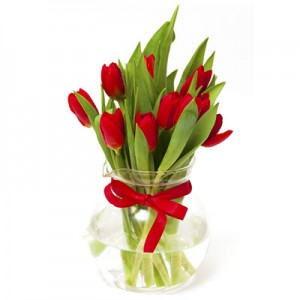 9 Red Tulips